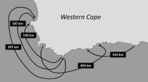 coastal_movements