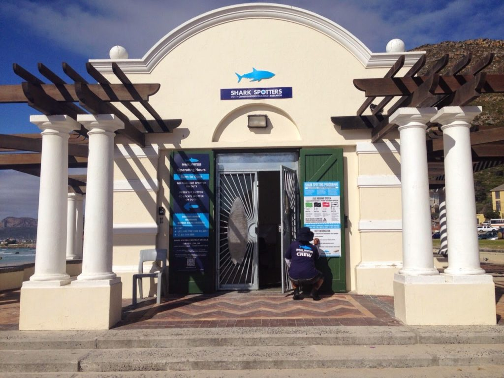 info-centre_copyright_shark-spotters